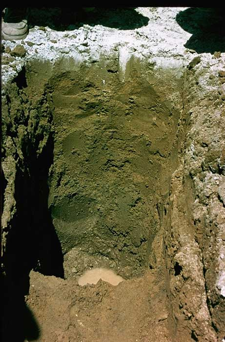 The shades of soil soils matter get the scoop for Minerals present in soil