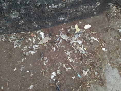 plastic-in-compost