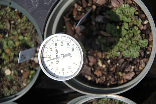 how to tell the temperature of soil