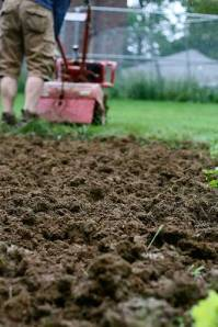 gardener-tilling