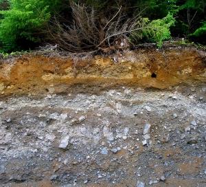 soil-profile