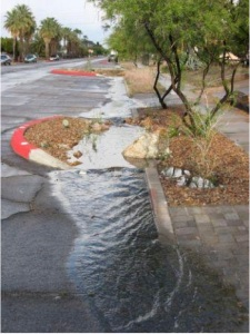 """A """"chicane"""" in Tucson, AZ. This traffic-slowing feature also functions as a rain garden, controlling water flow. Storms are infrequent but often heavy in this semi-arid city. The storm water pools around the rain garden, providing sustenance for the plants and trees. Field studies show that the rain gardens have enhanced soil health and plant growth. Basins like this also result in larger trees. Photo Credit: Watershed Management Group (WMG), Tucson, AZ"""