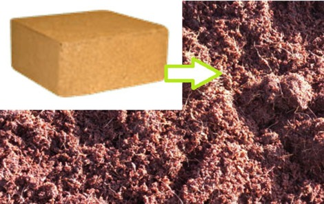 coir blocks and reconstituted coir - fb