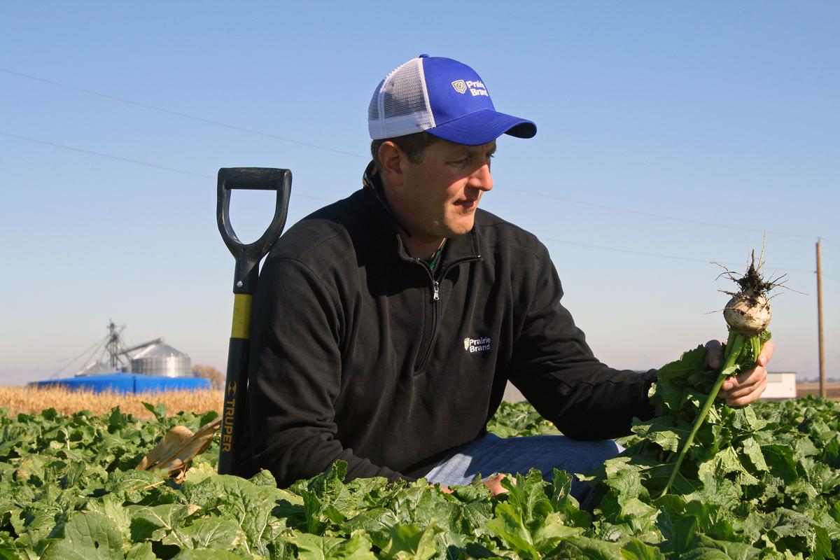 Monitoring Cover Crop Progress