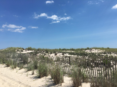 Beach with fence and grass