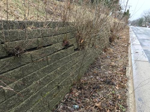 How Can I Fix My Falling Retaining Wall Soils Matter