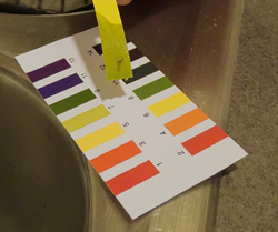 pH compare strip to provided chart x250