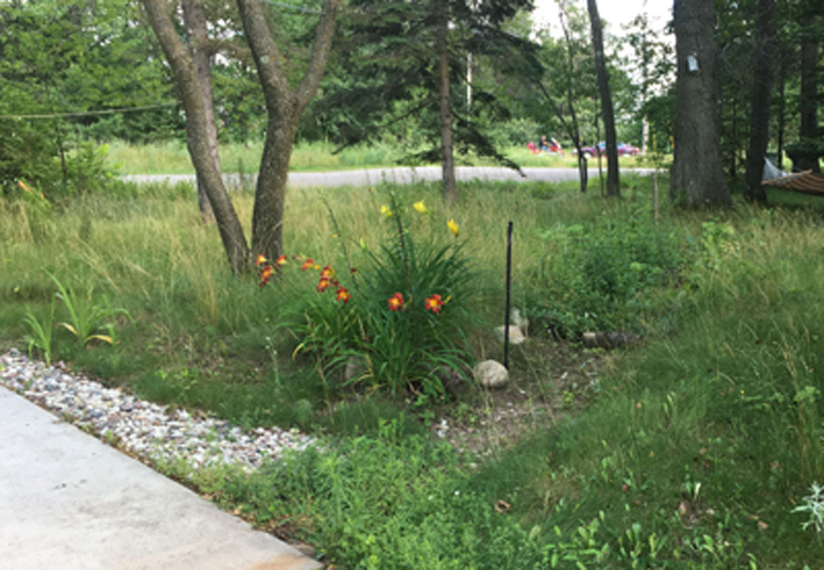 driveway with swale-raingarden to capture runoff