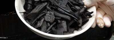 chips of biochar