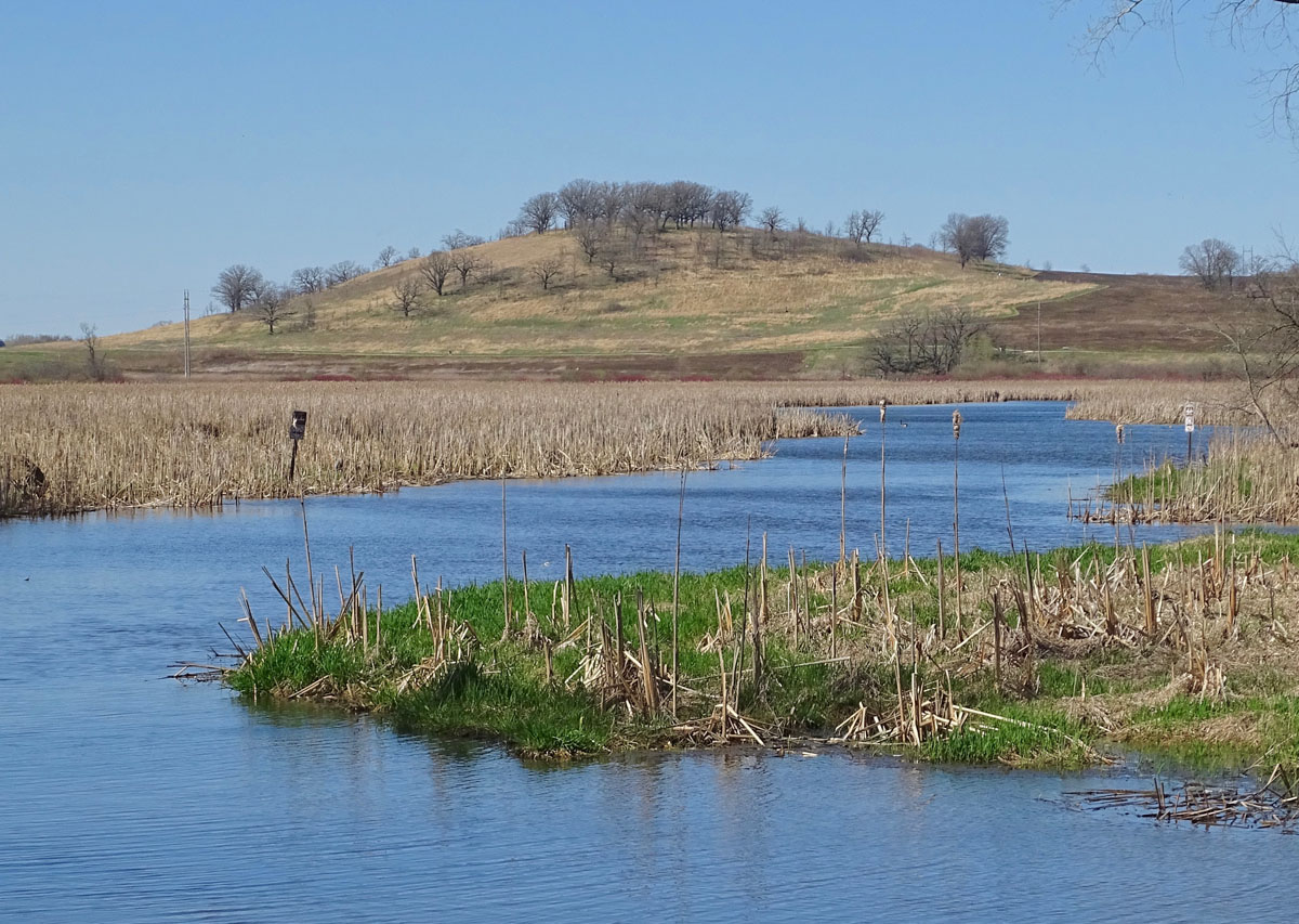Wetland in spring with hill and stream