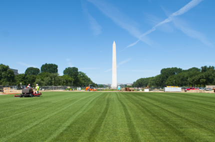 national mall grass in washington, dc