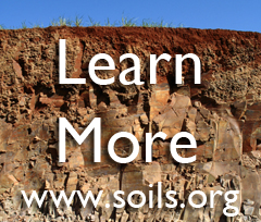 What type of soil is good for a foundation for buildings or