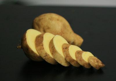 what started the irish potato famine