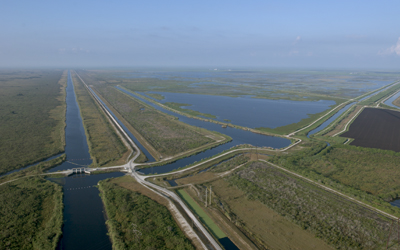 How do wetlands protect land andwater?