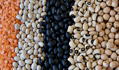Pulses such as dried beans, peas, lentils