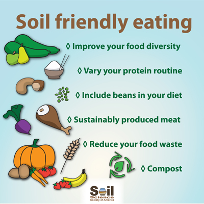 List of things to do that help soil health