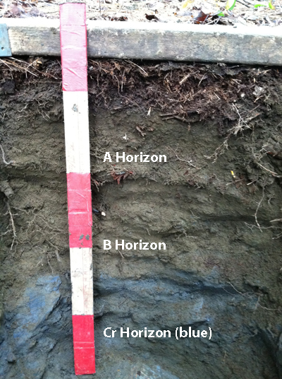 soil layers showing blue bottom layer