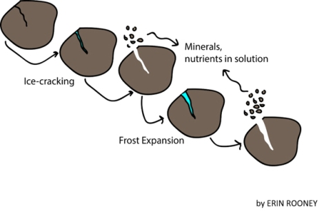 Illustration of small pebbles breaking as ice freezes and thaws