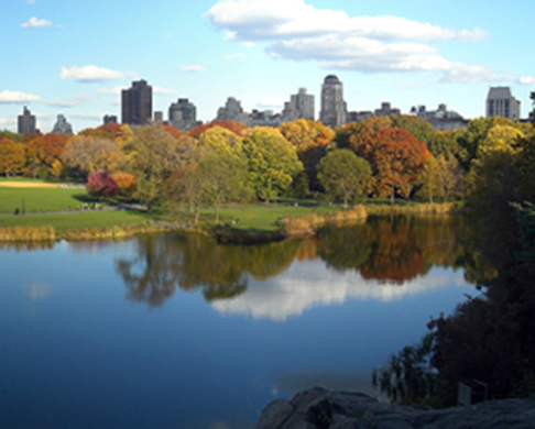 Central Park in New York, lake, grassy field and skyscrapers behind