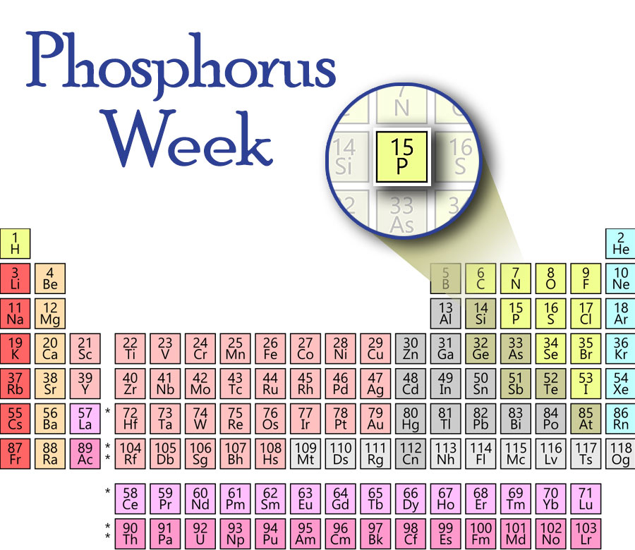 Periodic Table P Graphin KB