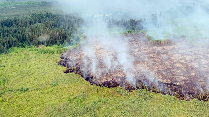 What happened to Alaska's soils during the 2019 fires?