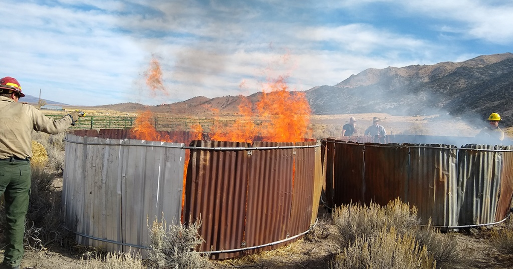 males tending to controlled burns in desert