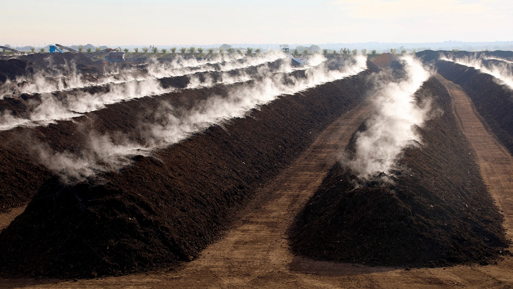 Large piles of compost with steam rising