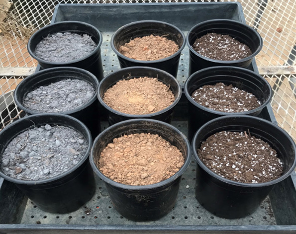 three different types of soil in pots
