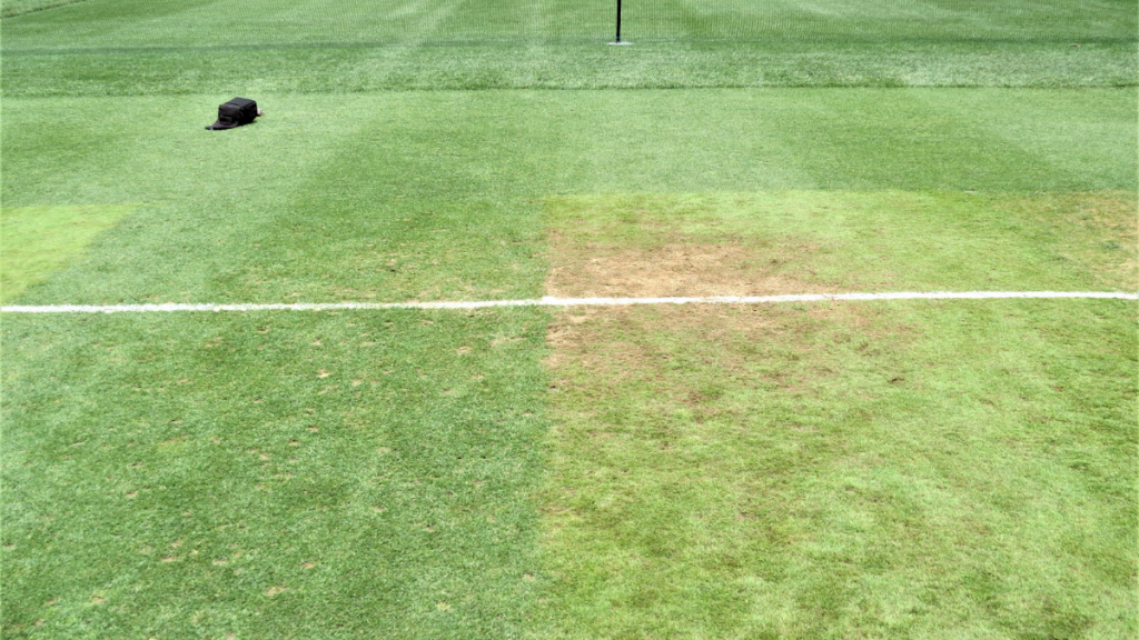 side by side turfgrass with the grass on the right showing soil due to foot traffic