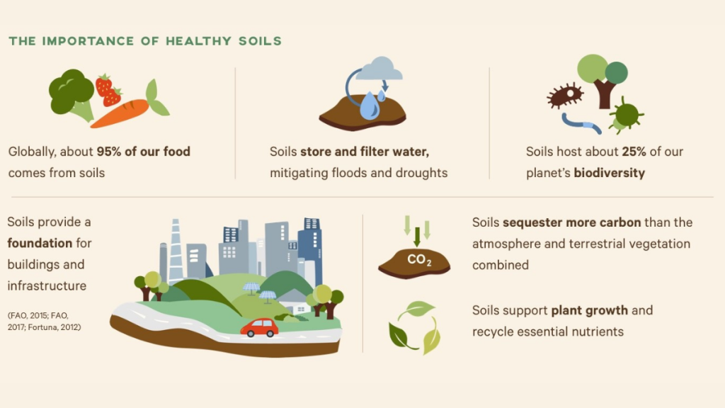 graphic with several animated images and explanations depicting the importance of soil
